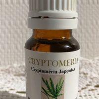 Huile essentielle cryptomeria